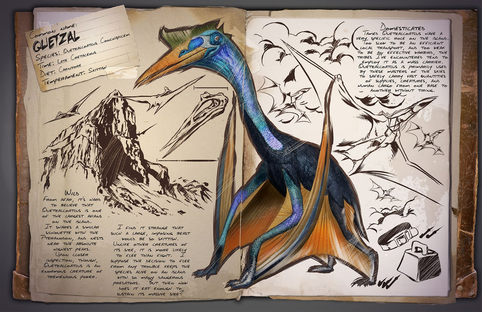 Flying archive ark survival evolved dino dossier quetzalcoatlus aka quetzal malvernweather Gallery