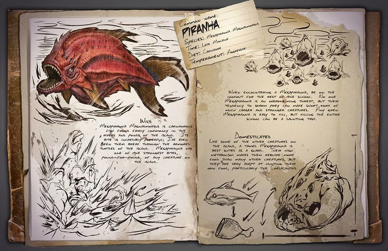 800px-Piranha