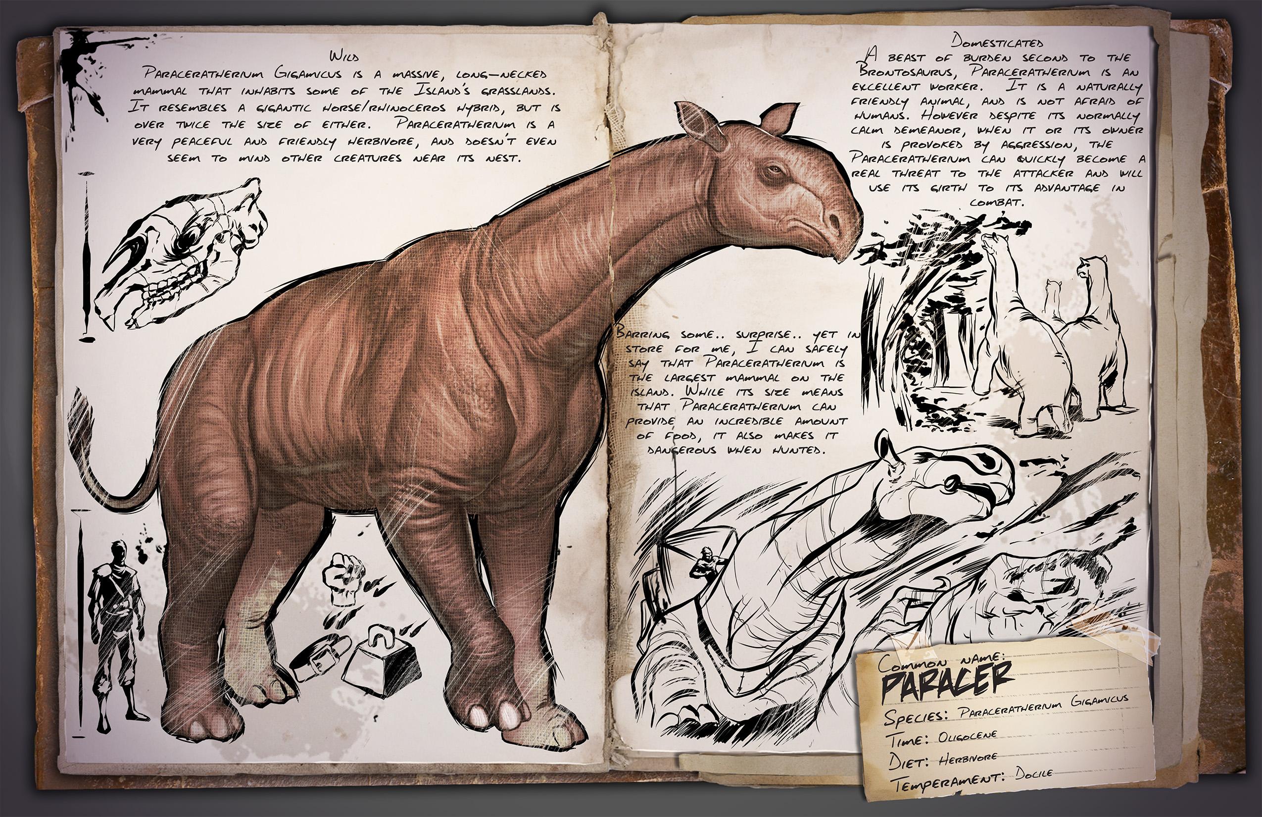 Dino Dossier: Paraceratherium aka Paracer
