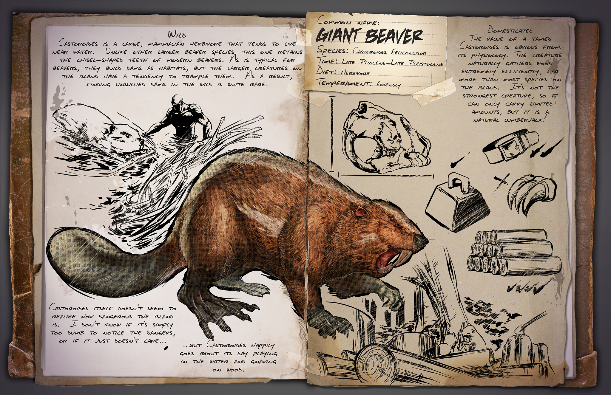 Creatures archive page 11 of 14 ark survival evolved dino dossier castoroides beaver malvernweather Gallery