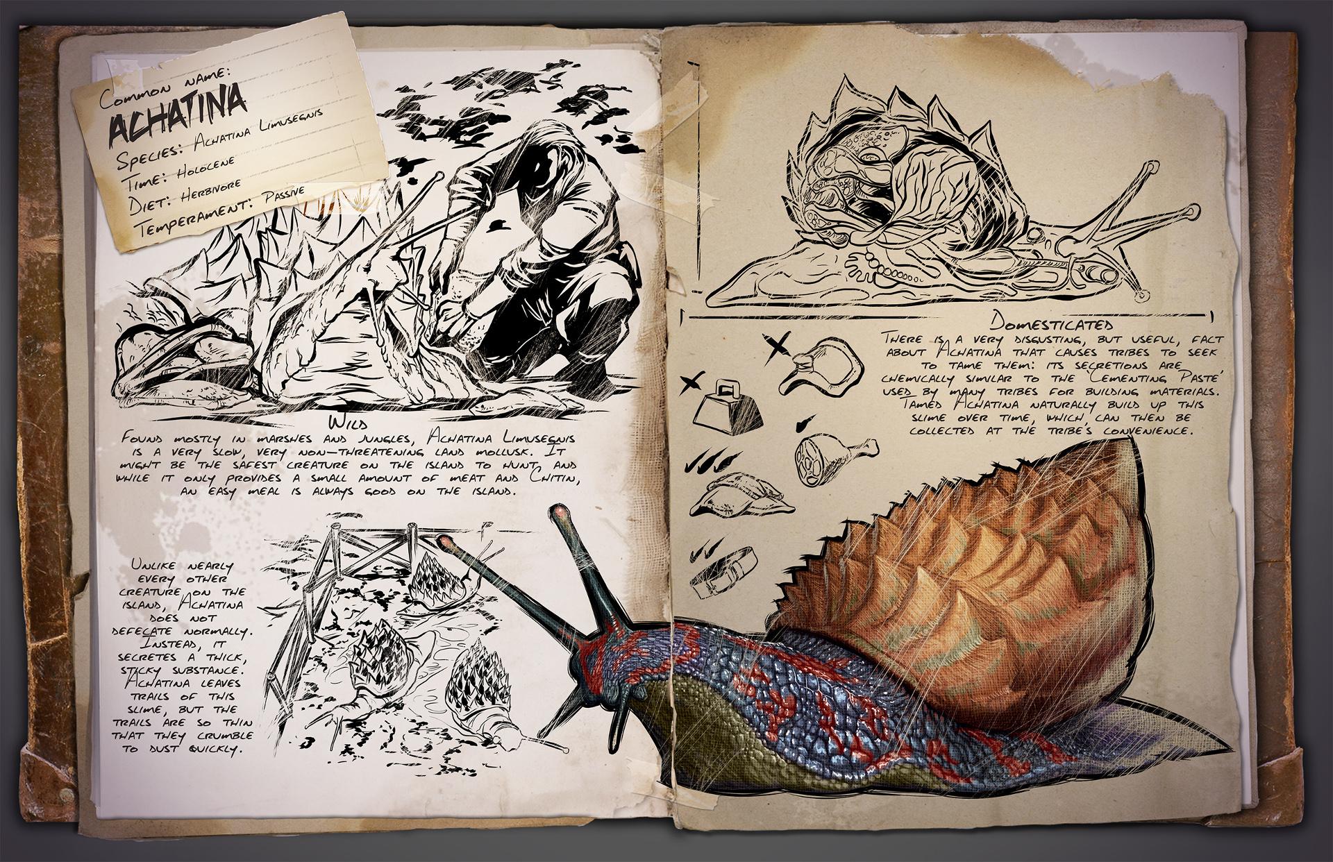 Dino Dossier: Achatina – Snail