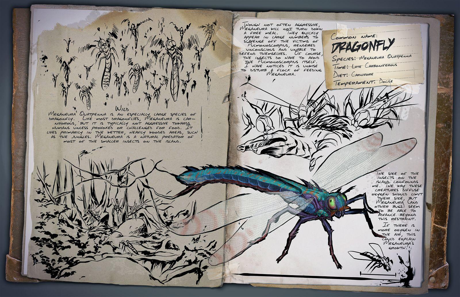 Deutsches Dino Dossier: Meganeura (Dragonfly)
