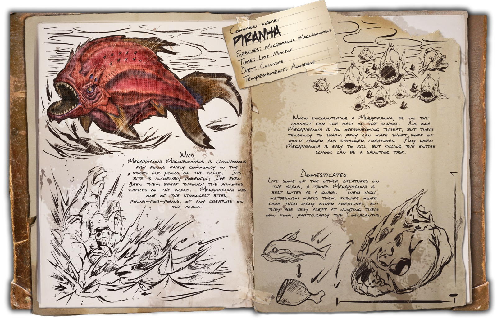 1600px-Dossier_Piranha