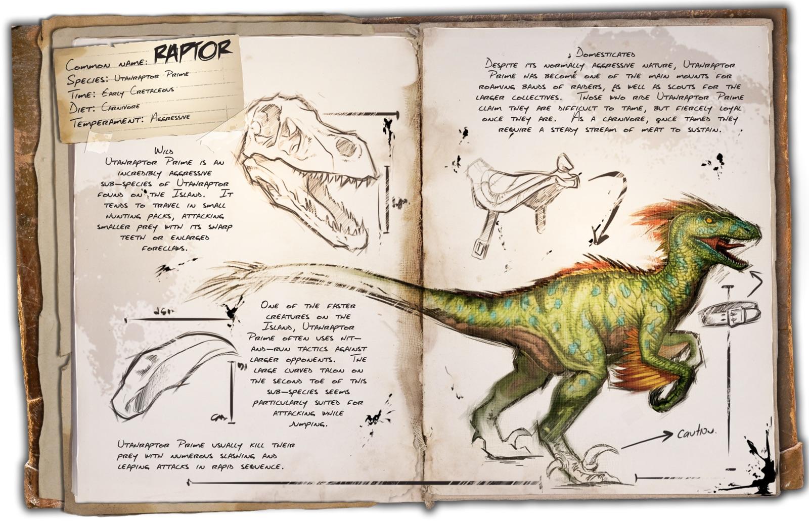 Dino Dossier: Raptor