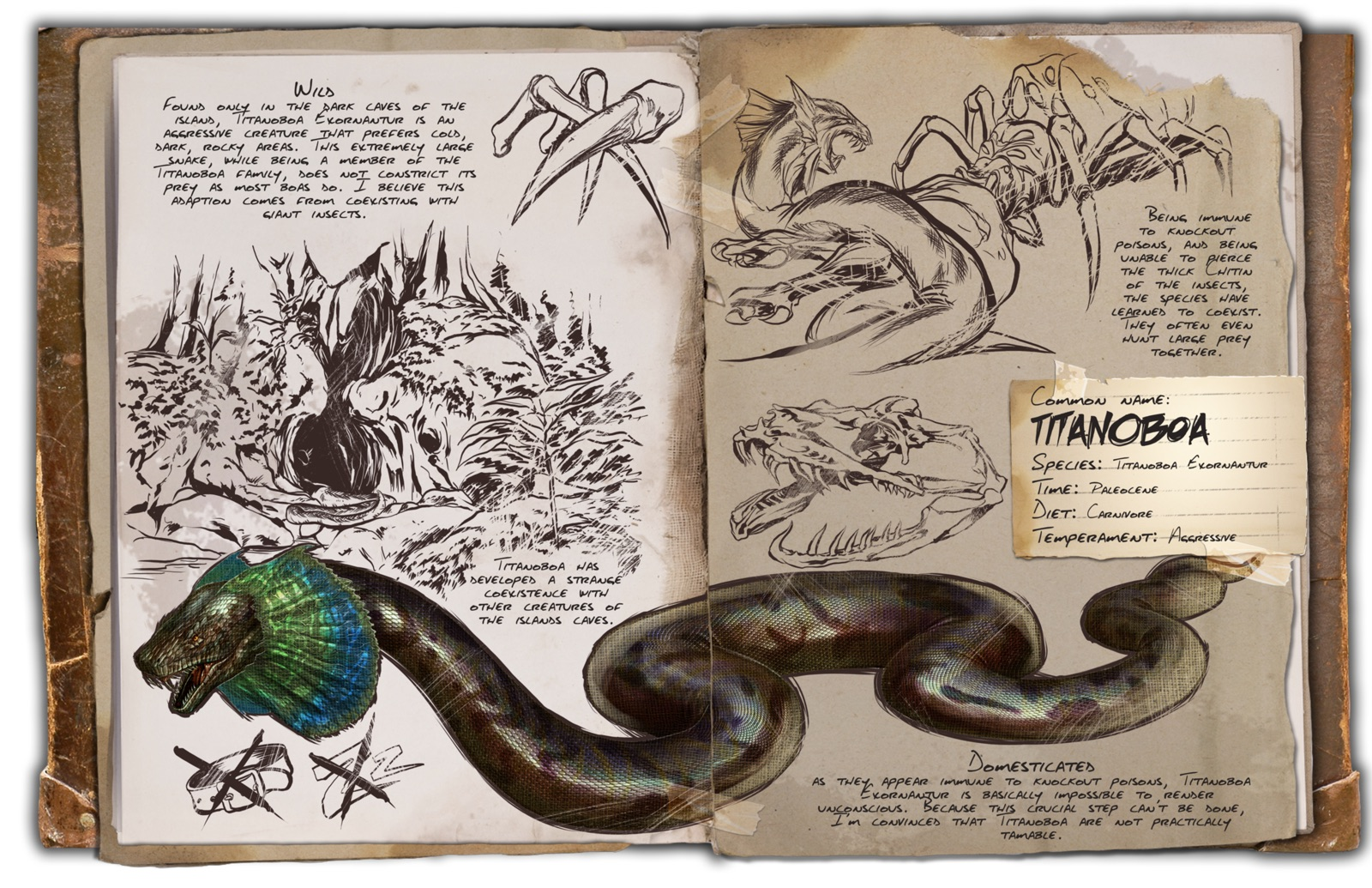 Deutsches Dino Dossier: Titanoboa