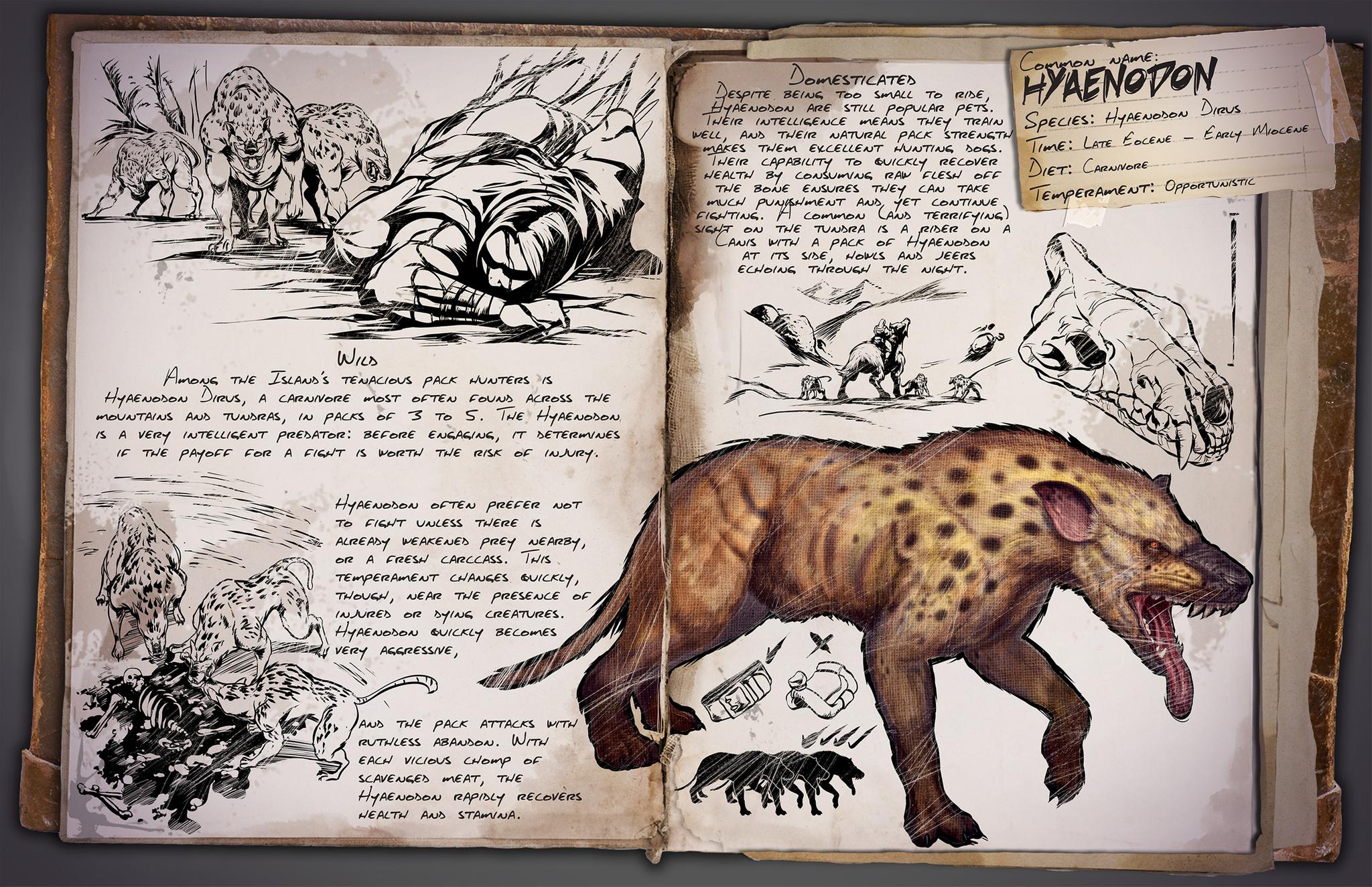 Deutsches Dino Dossier: Hyaenodon