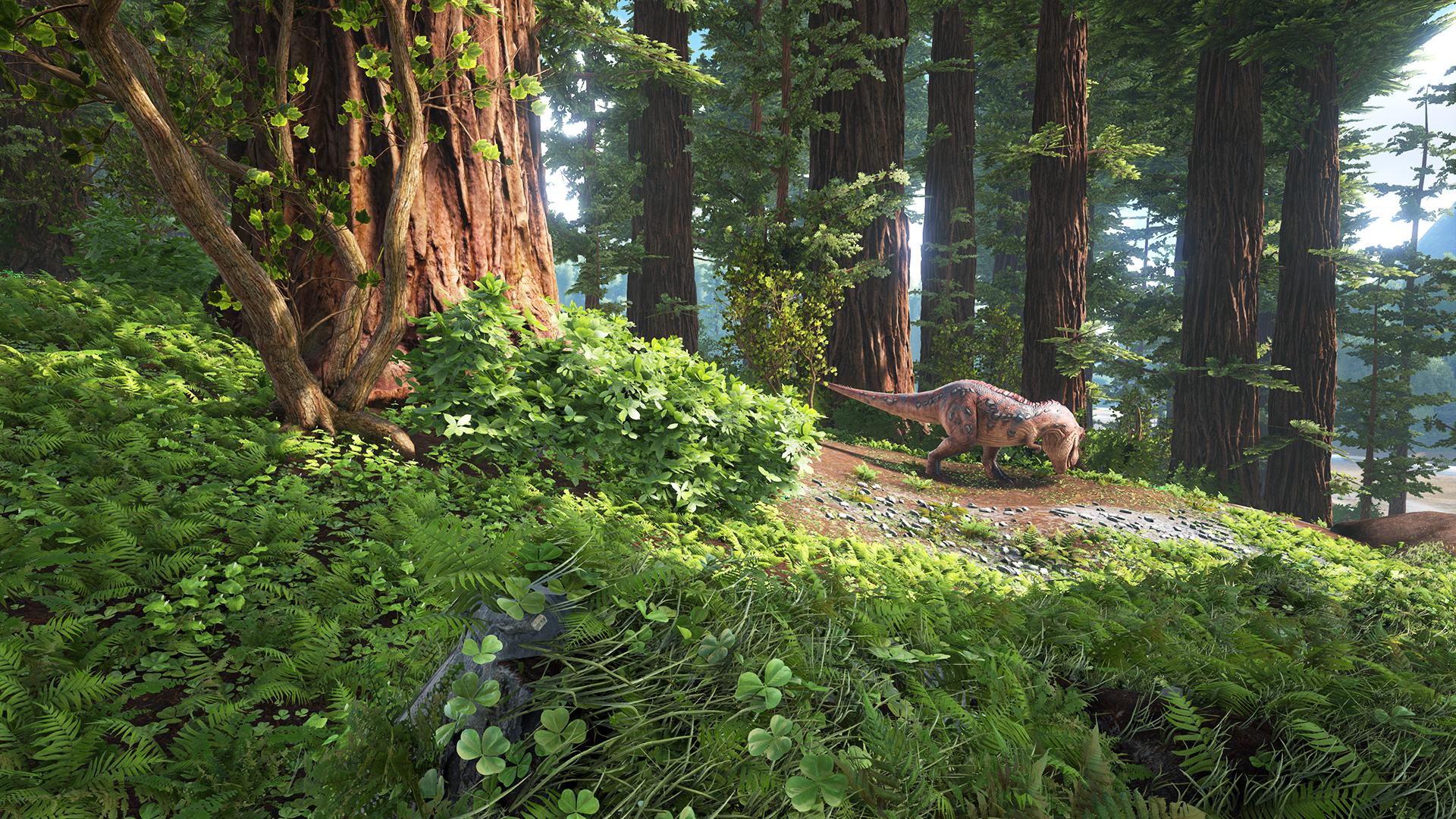 1464069603_Redwoods
