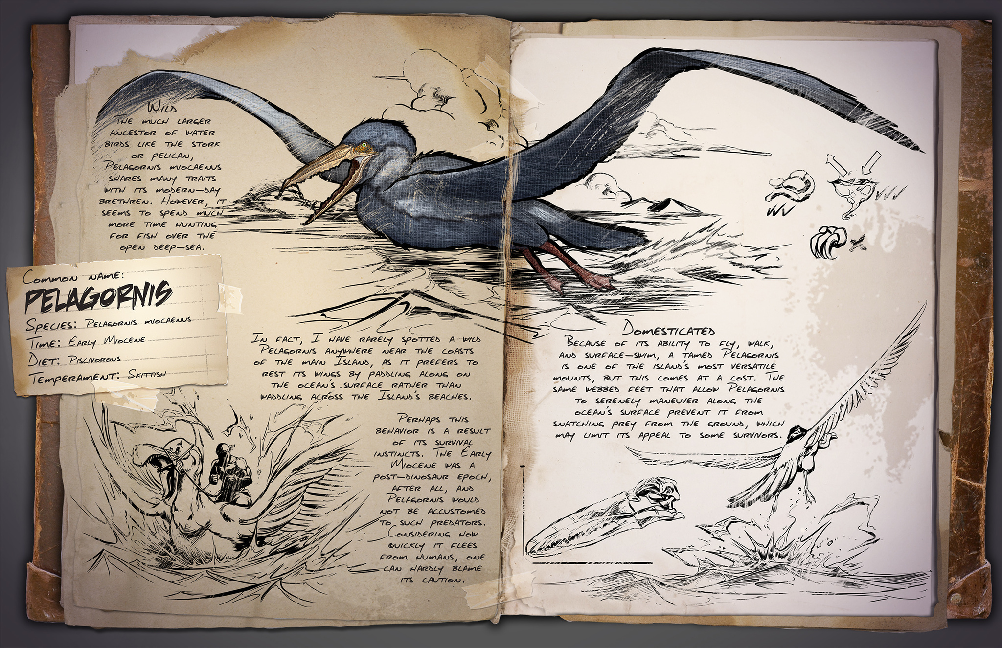 Flying archive ark survival evolved dino dossier pelagornis malvernweather Gallery