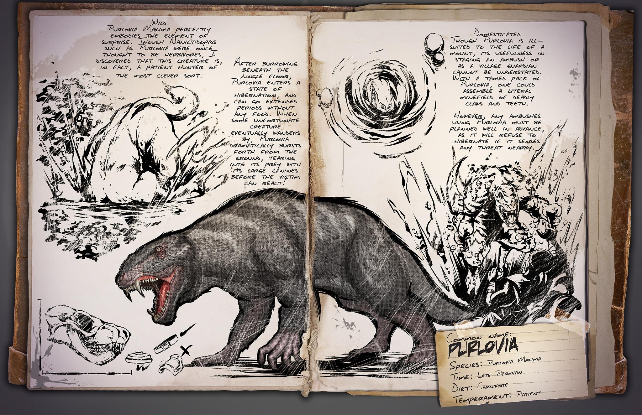 Deutsches Dino Dossier: Purlovia