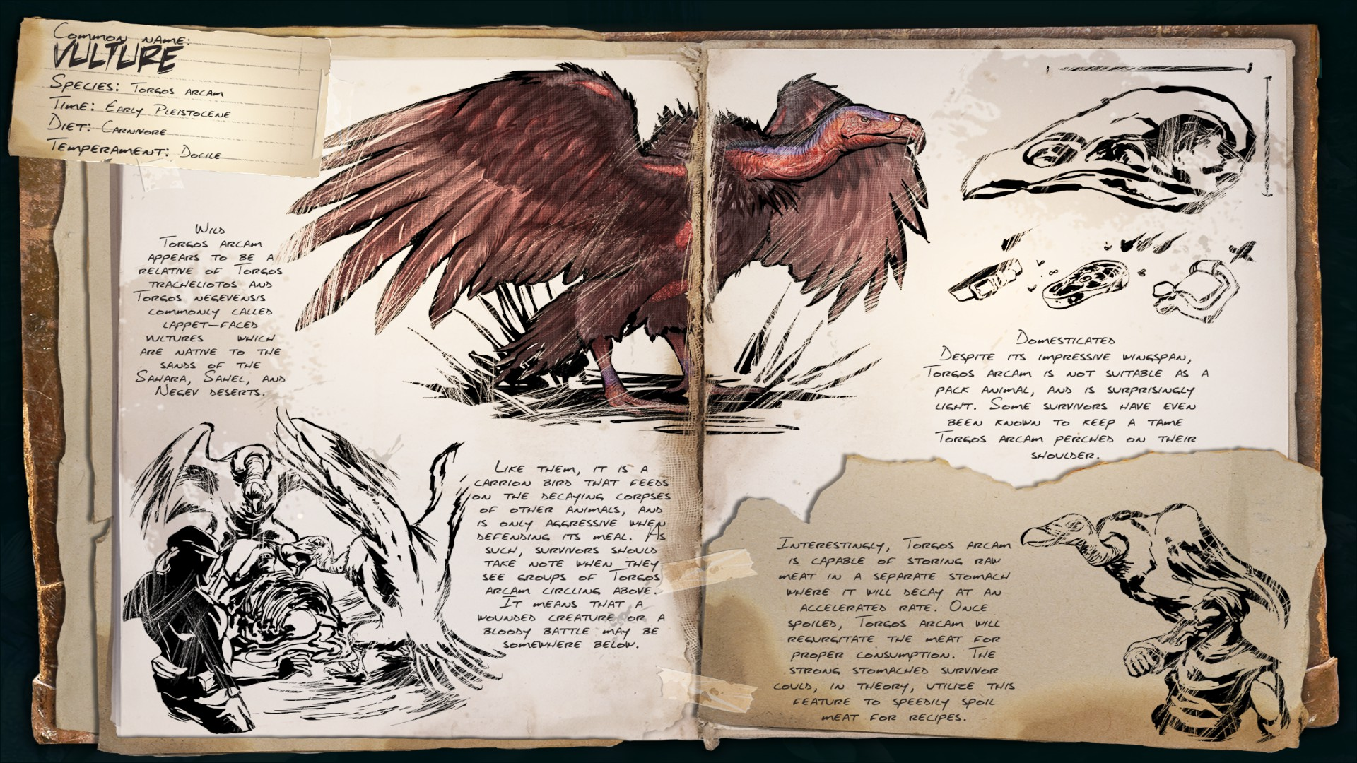 Deutsches Dino Dossier: Vulture – Geier (Scorched Earth)