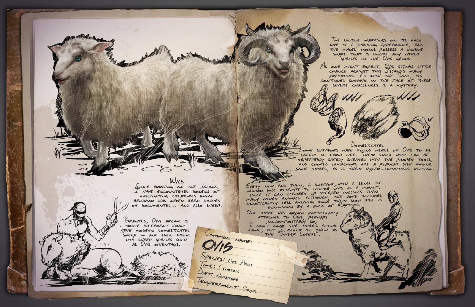 Deutsches Dino Dossier: Ovis