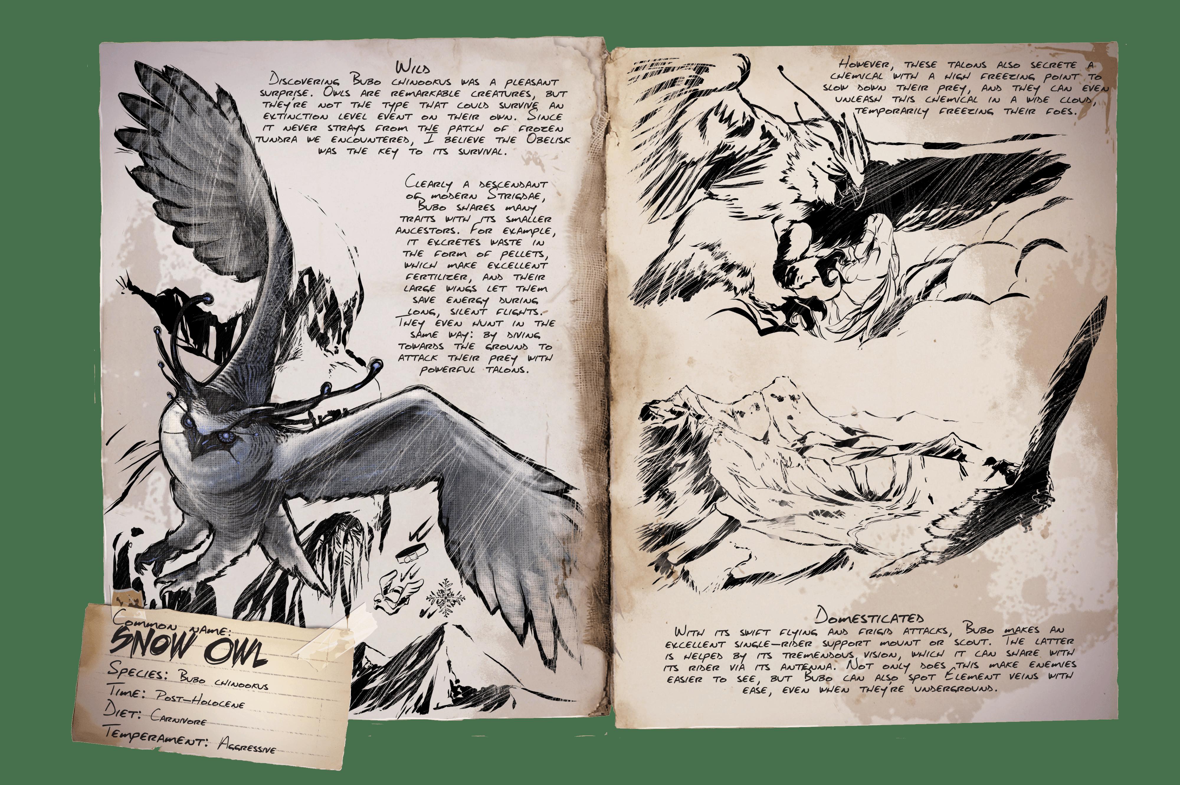 Dino Dossier: Snow Owl
