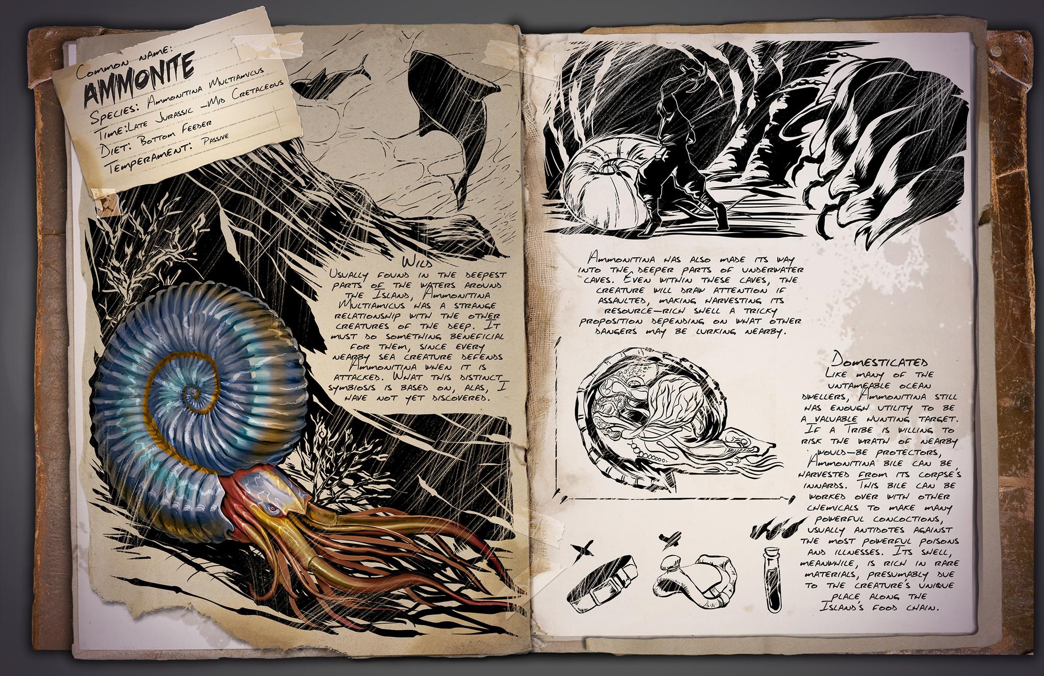 Deutsches Dino Dossier: Ammonite