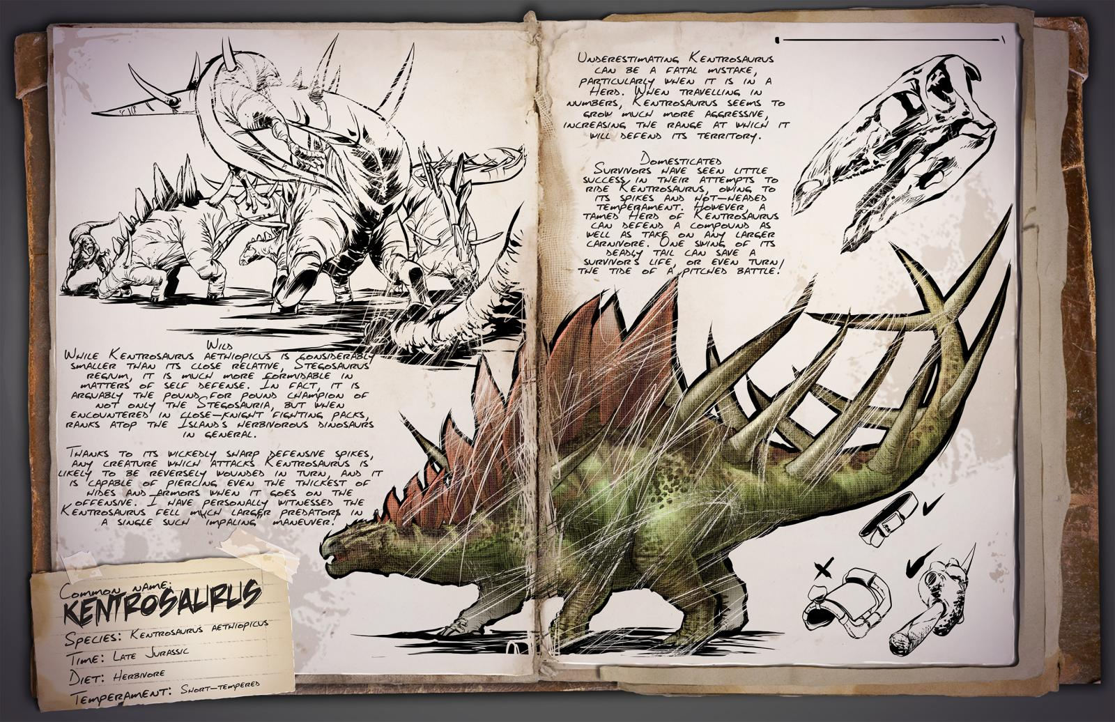 Deutsches Dino Dossier: Kentrosaurus