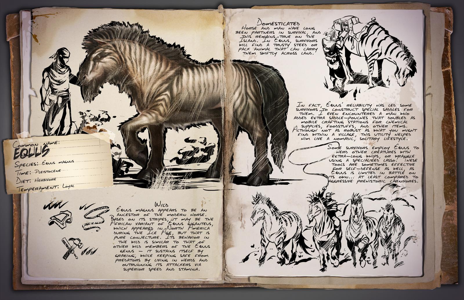 Deutsches Dino Dossier: Equus (Pferd)