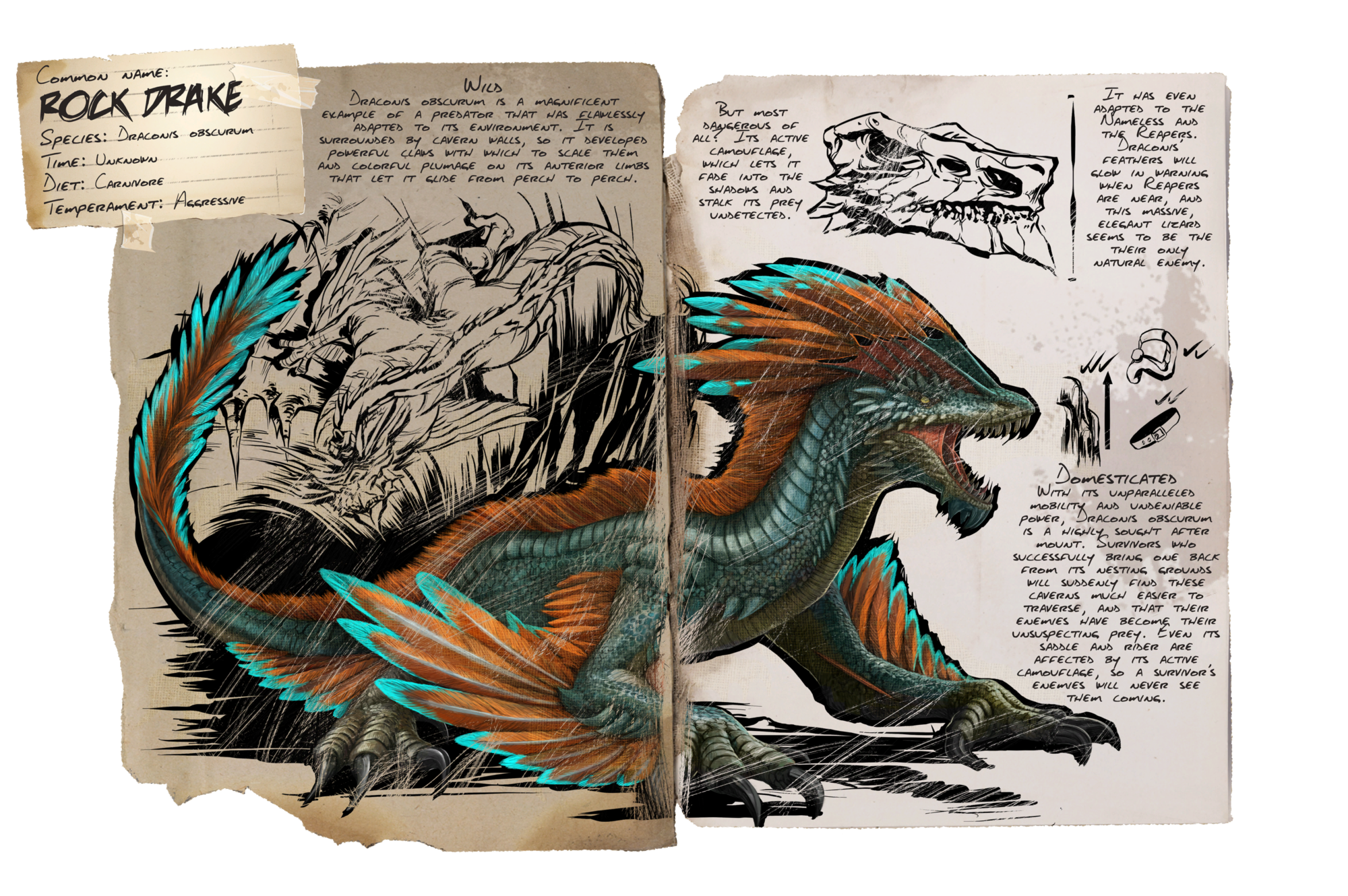 Deutsches Dino Dossier: Rock Drake